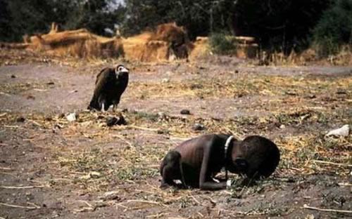 Starvation