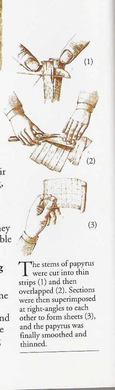 Papyrus_making_2